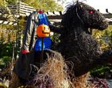 Headless Horseman by trixxie17, holidays gallery