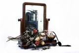 old mirror and old roses by JQ, Photography->Still life gallery