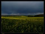 Rape by Larser, Photography->Landscape gallery