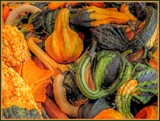 Gourds by trixxie17, holidays gallery
