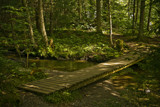 Another Bridge to the Falls by phasmid, Photography->Bridges gallery