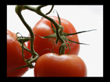 Tomatoes by theradman, Photography->Food/Drink gallery
