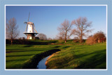 Zeeland Countryside (38), Typical Dutch by corngrowth, photography->mills gallery