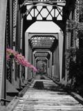 Marietta Harmar Bridge by lilkittees, Photography->Bridges gallery