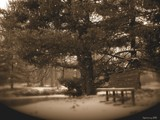 Shoebox Memory by jojomercury, Photography->Landscape gallery
