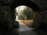 Nutbrook Trail (1) by icenine, Photography->Bridges gallery