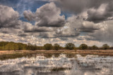 Clouds Reflecting in a Pond in Springtime by DigiCamMan, photography->manipulation gallery