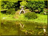 Setagaya Park #2 by boremachine, Photography->Landscape gallery