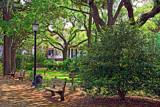 Savannah Park 2 by luckyshot, Photography->Gardens gallery