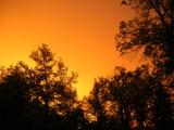 orange by zambitzu, Photography->Sunset/Rise gallery