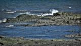 SHORELINE by picardroe, photography->shorelines gallery