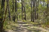 Berrara Bush Walk by flanno2610, photography->nature gallery