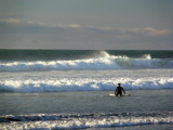 Surfer at Torrey Pines State Beach by mrpeachum, Photography->Shorelines gallery