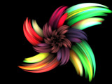 Your Christmas Flower by jswgpb, Abstract->Fractal gallery