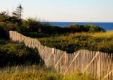 fragile by solita17, Photography->Shorelines gallery