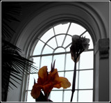 Orangery Window by TheWhisperer, contests->curves gallery