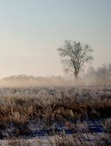 Early Morning 2 by gerryp, Photography->Landscape gallery