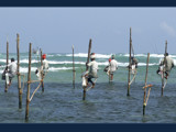 Pole fishing by priyanthab, Photography->People gallery