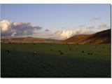 Derbyshire's rolling landscape................ by fogz, Photography->Landscape gallery
