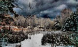 Happy Holidays -One and All by snapshooter87, photography->landscape gallery