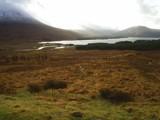 Glen Coe Run (2) (Ben Nevis - Scotland) by golders, photography->landscape gallery