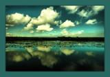 norfolk broads by JQ, Photography->Landscape gallery