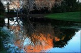 Winter reflections #2 by LynEve, photography->landscape gallery