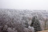 Frosty Morn by kidder, Photography->Landscape gallery