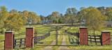 A Louisiana Landscape by 100k_xle, photography->landscape gallery