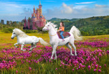 Princess Gracie by pastureyes, photography->manipulation gallery