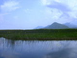 Skadar Lake by nigelmoore, Photography->Landscape gallery