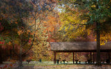 Autumn Picnic by casechaser, photography->manipulation gallery