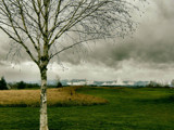 Low Clouds and a Brewing Storm Sky by verenabloo, Photography->Landscape gallery