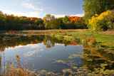 A Song of Seasons Changing by Silvanus, photography->landscape gallery