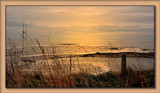 Soft Evening Light by LynEve, Photography->Shorelines gallery