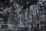 Passing Through On A Blackened Street by casechaser, abstract->Surrealism gallery