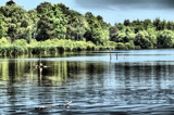 Stover Park Lake HDR by ttpicasso, Photography->Water gallery