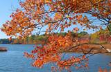 October by solita17, Photography->Shorelines gallery