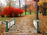 Bridge to Autumn Colors by jojomercury, photography->gardens gallery