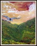 Bird of prey by rotcivski, illustrations->traditional gallery