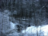 Missouri Woods in Snow by jojomercury, Photography->Landscape gallery