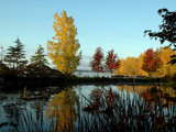 Autumn Reflections by ladyred, Photography->Shorelines gallery
