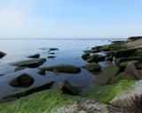 Door Bluff Shoreline by Pistos, photography->shorelines gallery