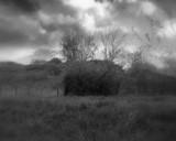 Lost landscape by rotcivski, photography->landscape gallery