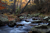 Autumn Stream by viking_boy, photography->landscape gallery