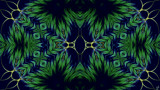 Grass Is Growing by Joanie, abstract->fractal gallery