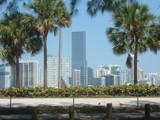 Miami by jennyvladimirova, Photography->City gallery