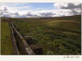 unbridled landscape... by fogz, Photography->Landscape gallery