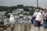 Seagull vs people by s0050463, Photography->People gallery