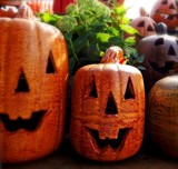 Pottery Pumpkins by trixxie17, photography->still life gallery